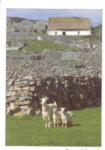 aran-islands-inisheer-001